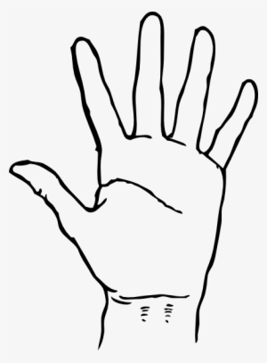 White black hand clipart clip transparent library Black Hand PNG Images   PNG Cliparts Free Download on SeekPNG clip transparent library