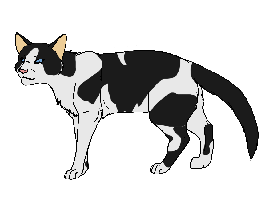 White cat with black patches clipart banner library ShadowClan by Twistedfoot on DeviantArt banner library