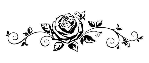 White clipart graphics picture free library Top 60 Black And White Rose Clip Art Vector Graphics ... picture free library