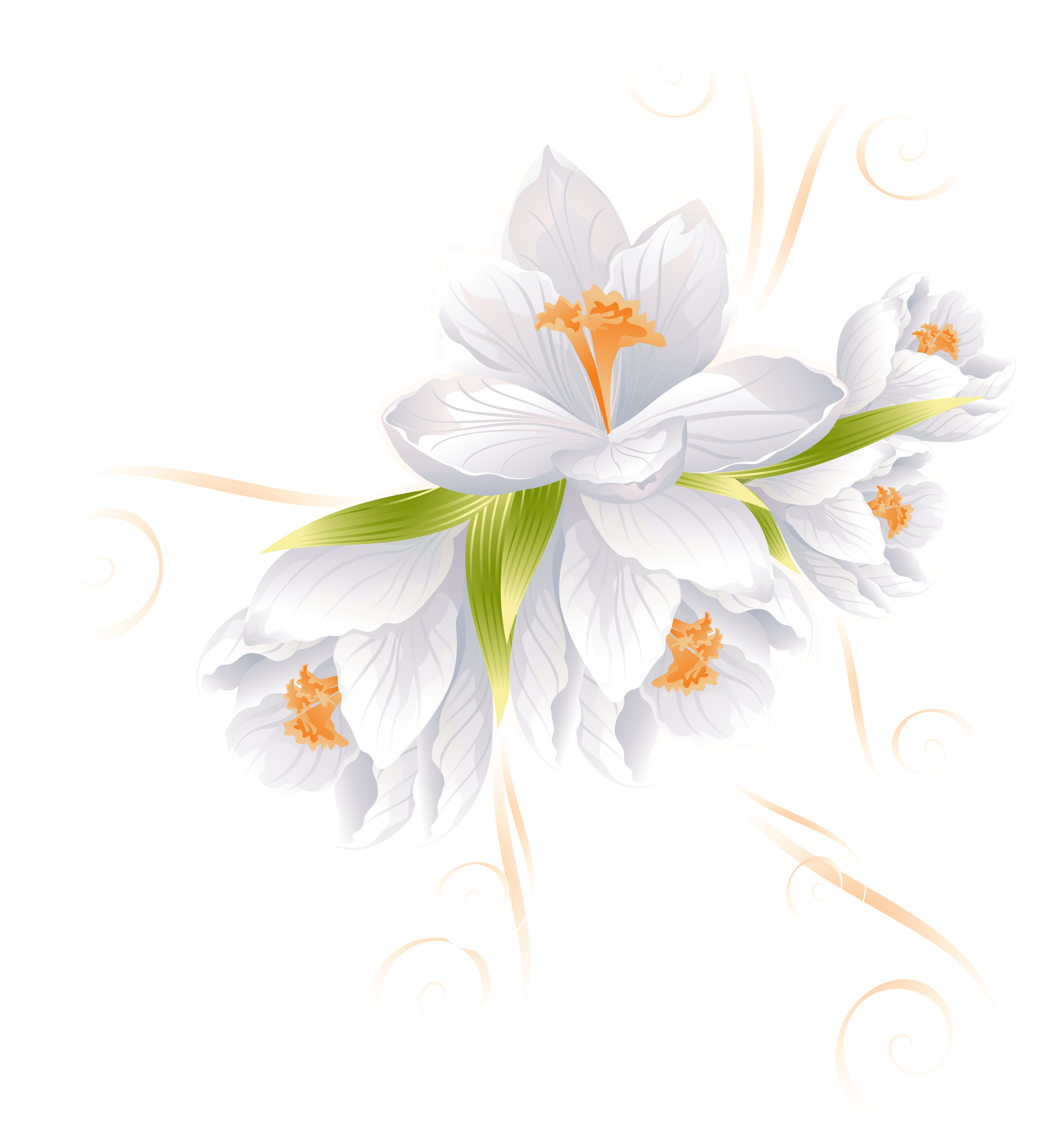 White clipart transparent vector royalty free download White Flower Decor Transparent PNG Clip Art Image | Gallery ... vector royalty free download