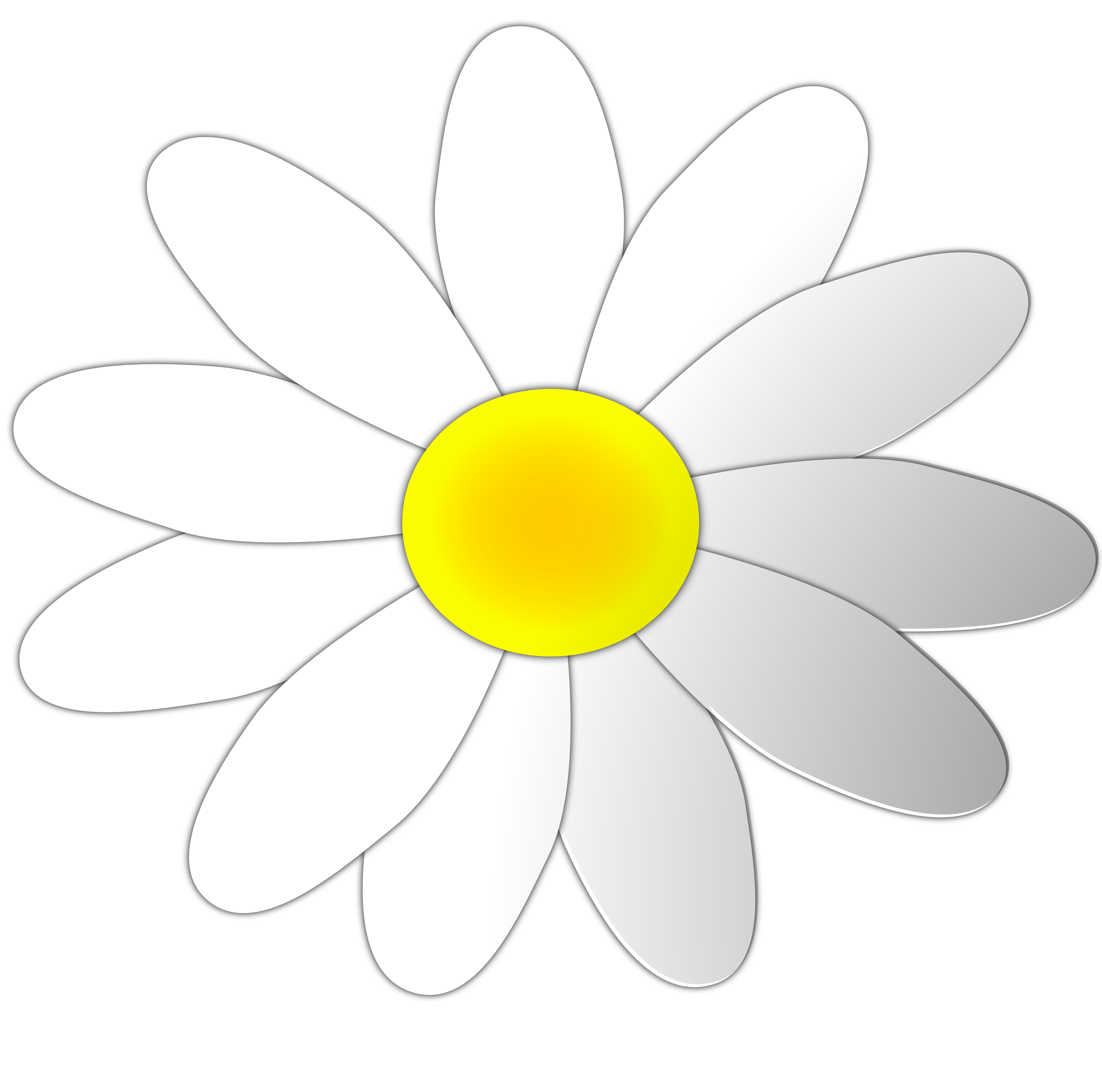 White daisy flower clipart image black and white download Free Free Daisy Images, Download Free Clip Art, Free Clip ... image black and white download