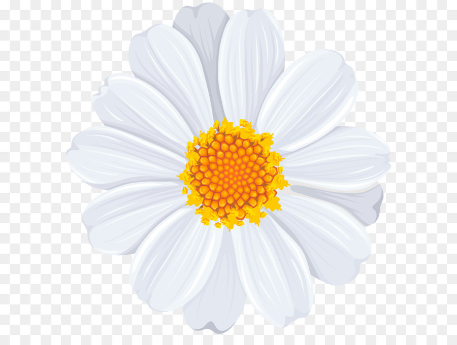 White daisy clipart clipart free library Common Daisy Clip Art - White Daisy PNG #261330 - PNG Images ... clipart free library