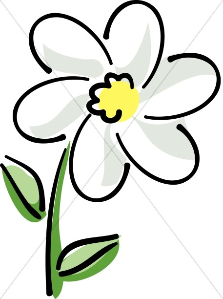White daisy flower clipart png royalty free download White Daisy with Yellow | Church Flower Clipart png royalty free download