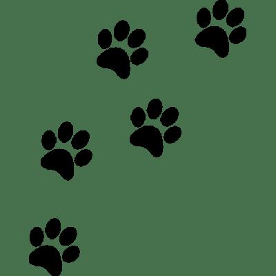 White dog paw print clipart transparent background clip art transparent download Dog Paw Print transparent PNG - StickPNG clip art transparent download