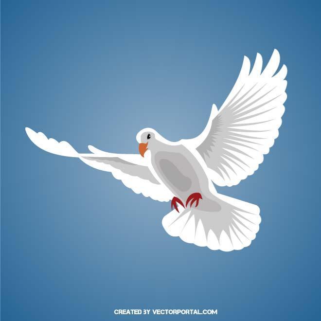 White dove in flight clipart image transparent download WHITE DOVE IN FLIGHT - Free vector image in AI and EPS format. image transparent download