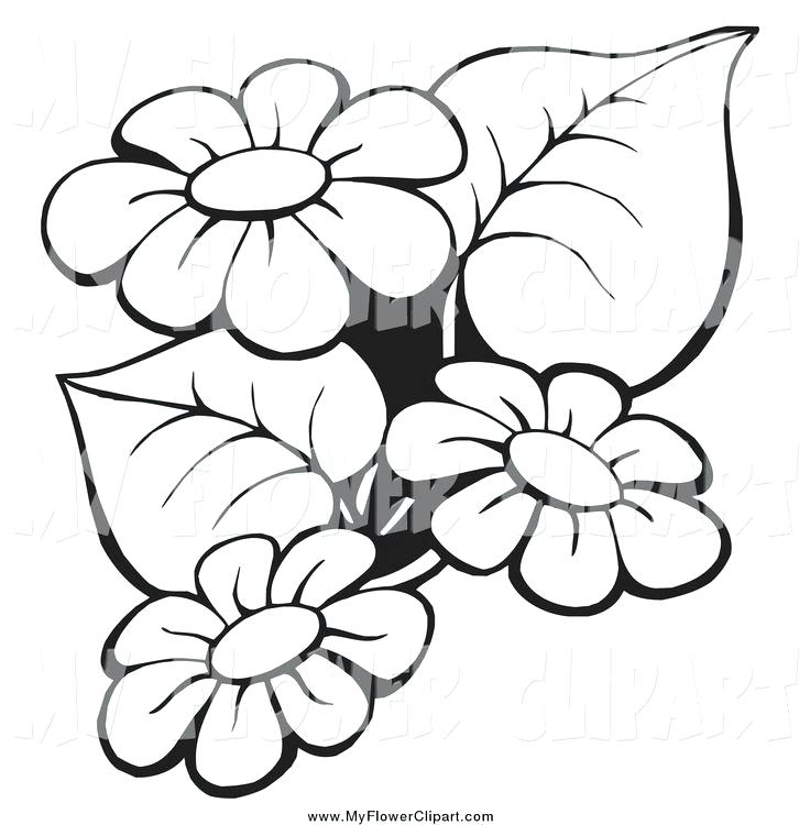 White flower bunch clipart free image royalty free download bunch of flowers clipart black and white – minervatech.net image royalty free download
