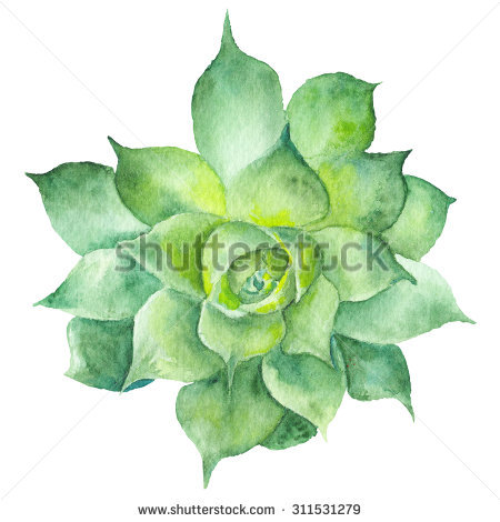 White flower green center watercolor clipart png svg library Watercolor Clip Art Flowers Stock Images, Royalty-Free Images ... svg library