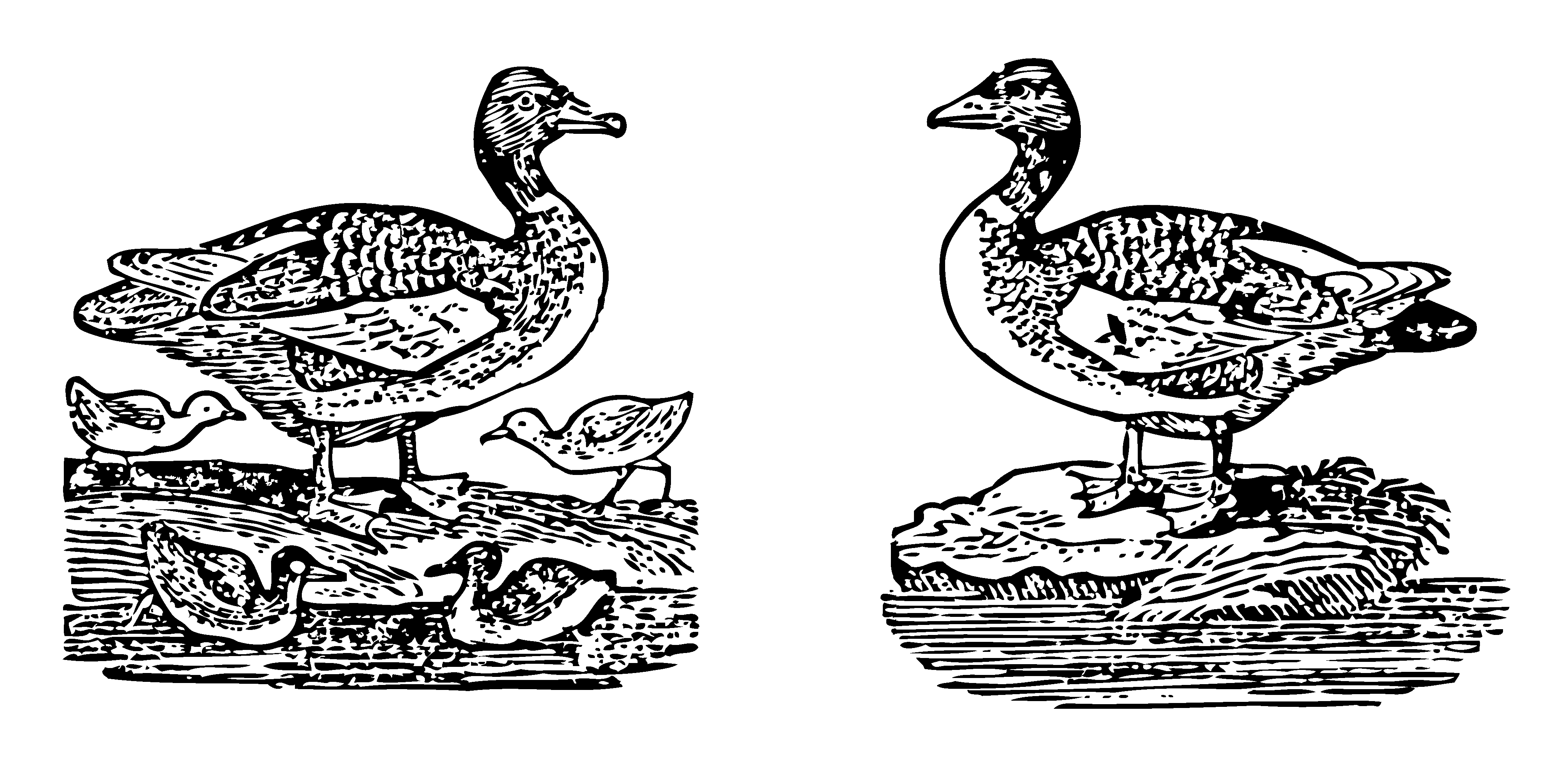 White gander clipart graphic library Bowen 1833 Mother Goose Goosey Gander Clip Art - Sweet Clip Art graphic library