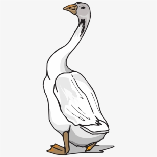 White gander clipart clipart freeuse download Goose White Bird - Gander, Cliparts & Cartoons - Jing.fm clipart freeuse download