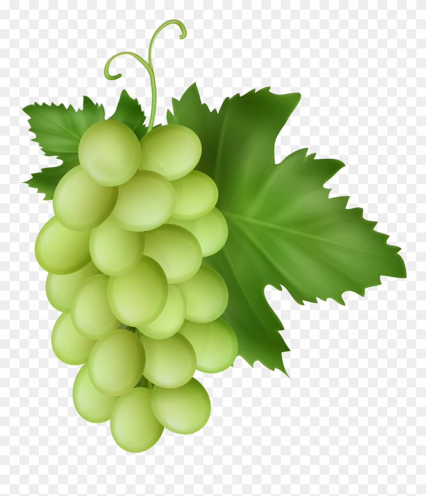 White grapes clipart banner library library White Grapes Transparent Image - Seedless Fruit Clipart ... banner library library