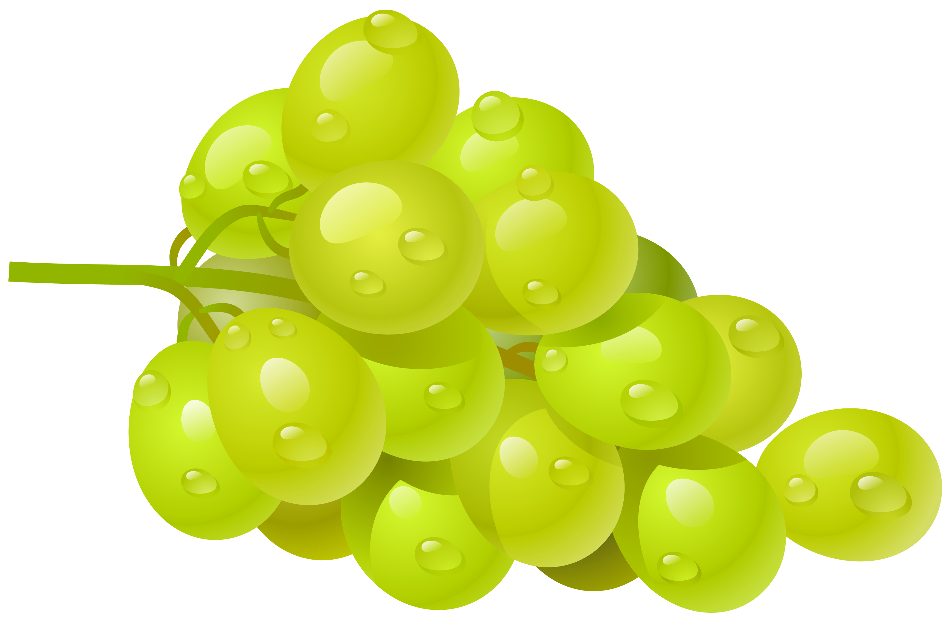White grapes clipart clip art freeuse library White Grape PNG Clipart Picture | Gallery Yopriceville ... clip art freeuse library