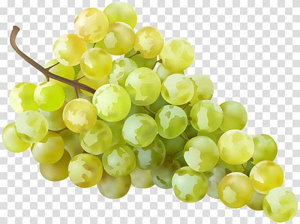 White grapes clipart clipart free library Sultana Grape Seedless fruit , White Grapes transparent ... clipart free library