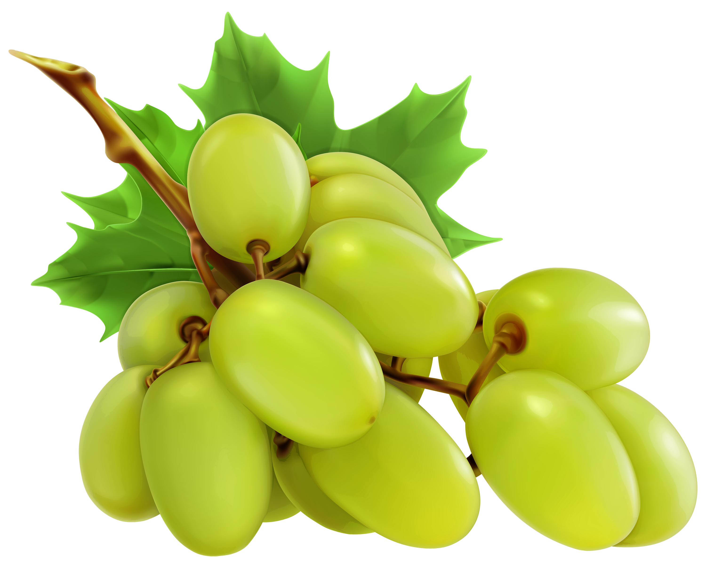 White grapes clipart graphic library library White Grapes PNG Clipart - Best WEB Clipart graphic library library