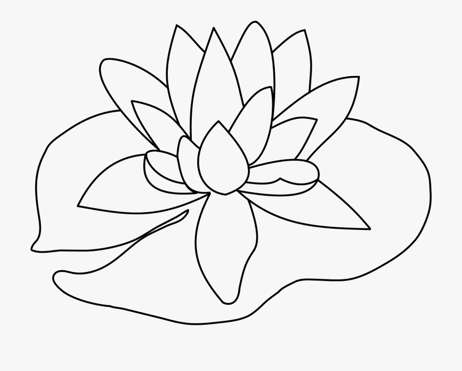 White lily pads clipart transparent download Lily Pad Flower Png Black And White - Drawing Of Lily Pad ... transparent download