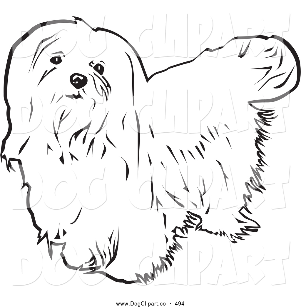 White maltese dog clipart vector black and white stock Vector Clip Art of a Cute Long Haired Maltese Dog Looking ... vector black and white stock