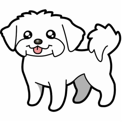 White maltese dog clipart transparent Maltese Dog Drawing | Free download best Maltese Dog Drawing ... transparent