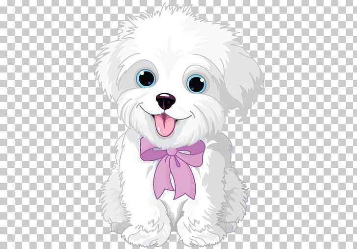 White maltese dog clipart svg transparent download Havanese Dog Maltese Dog Puppy Bichon Frise PNG, Clipart ... svg transparent download