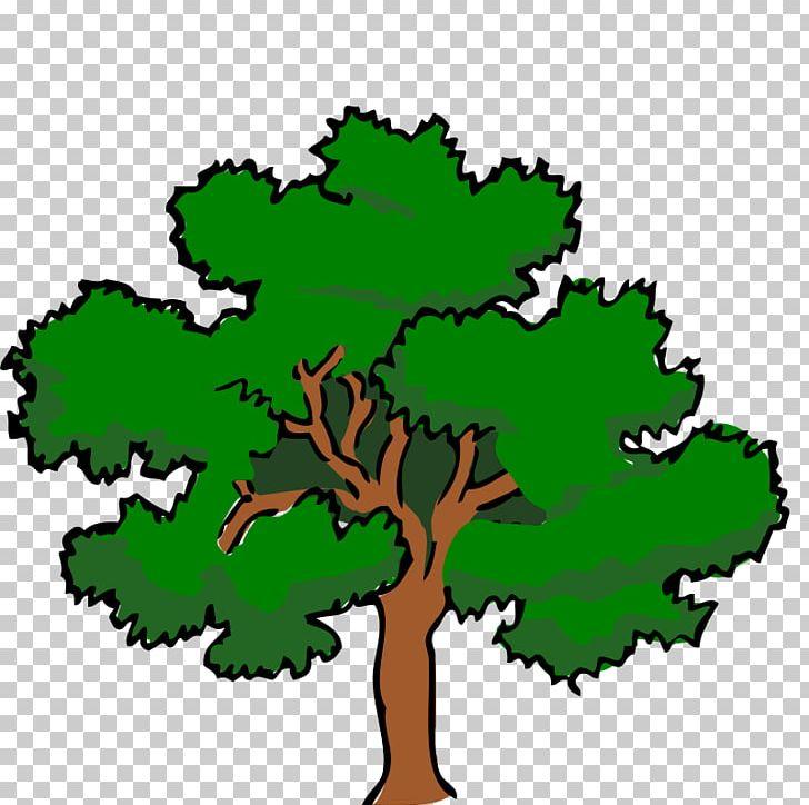 White oak clipart vector library stock White Oak Tree Swamp Spanish Oak PNG, Clipart, Artwork ... vector library stock