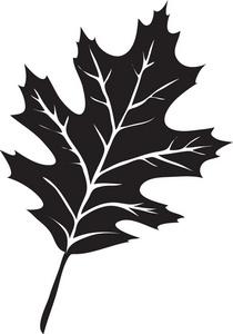 White oak leaf clipart image transparent Free Oak Leaf Cliparts, Download Free Clip Art, Free Clip ... image transparent
