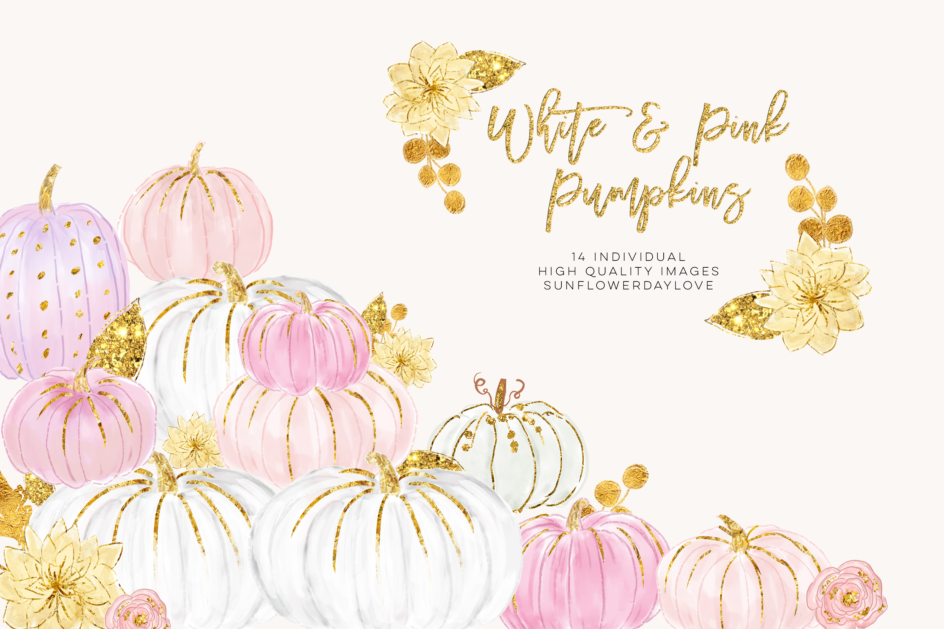 White pumpkin floral clipart clip royalty free library White and Pink Pumpkins, Watercolor Pastel Pumpkins clip royalty free library