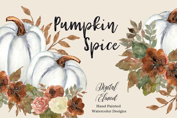 White pumpkin floral clipart clip art royalty free download Watercolor Fall and Autumn Pumpkin Clip-art, White Pumpkins ... clip art royalty free download