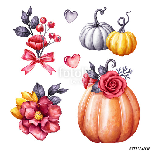 White pumpkin floral clipart png freeuse stock autumn watercolor pumpkin illustration, Halloween ornaments ... png freeuse stock