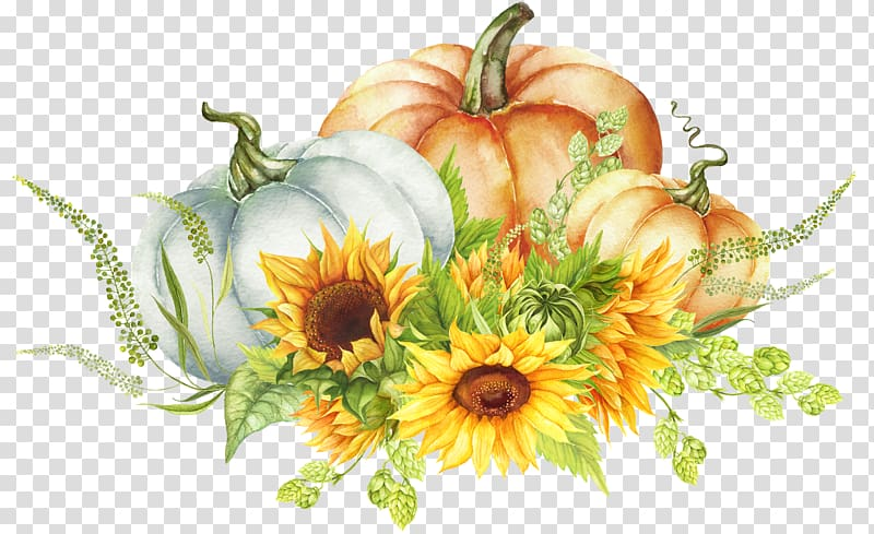 White pumpkin floral clipart image royalty free Orange ad white pumpkins with sunflower illustration ... image royalty free