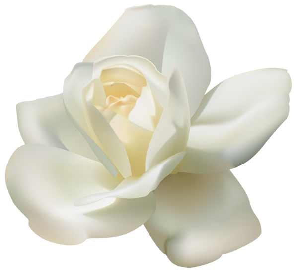 White rose png clipart png library library Download White Rose PNG - Free Transparent PNG Images, Icons ... png library library