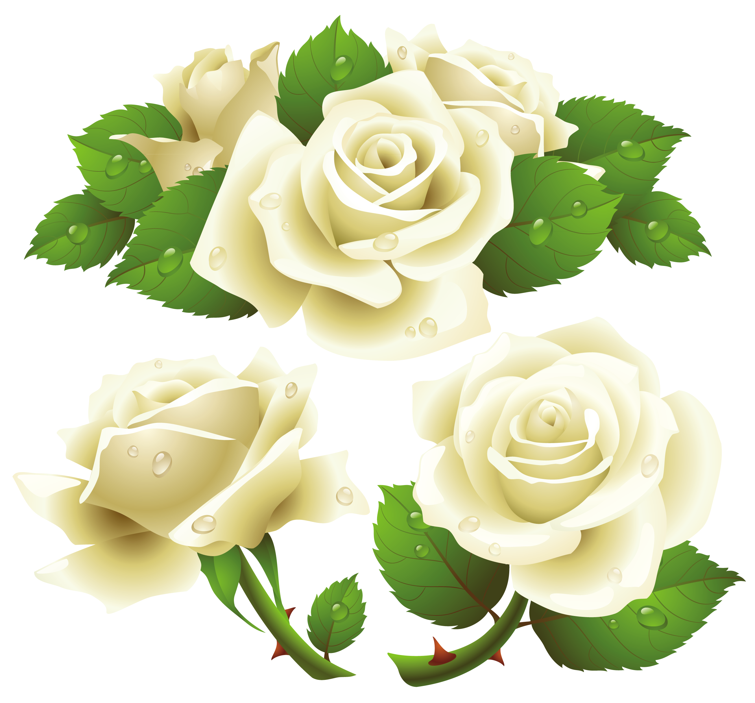 White rose png clipart graphic black and white Free White Roses Png, Download Free Clip Art, Free Clip Art ... graphic black and white