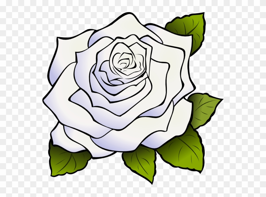 White rose png clipart png freeuse library Download White Rose Png Clipart Clip Art Drawing Flower ... png freeuse library