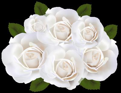 White rose png clipart svg royalty free White Roses PNG Clip Art Transparent Image - DLPNG.com svg royalty free