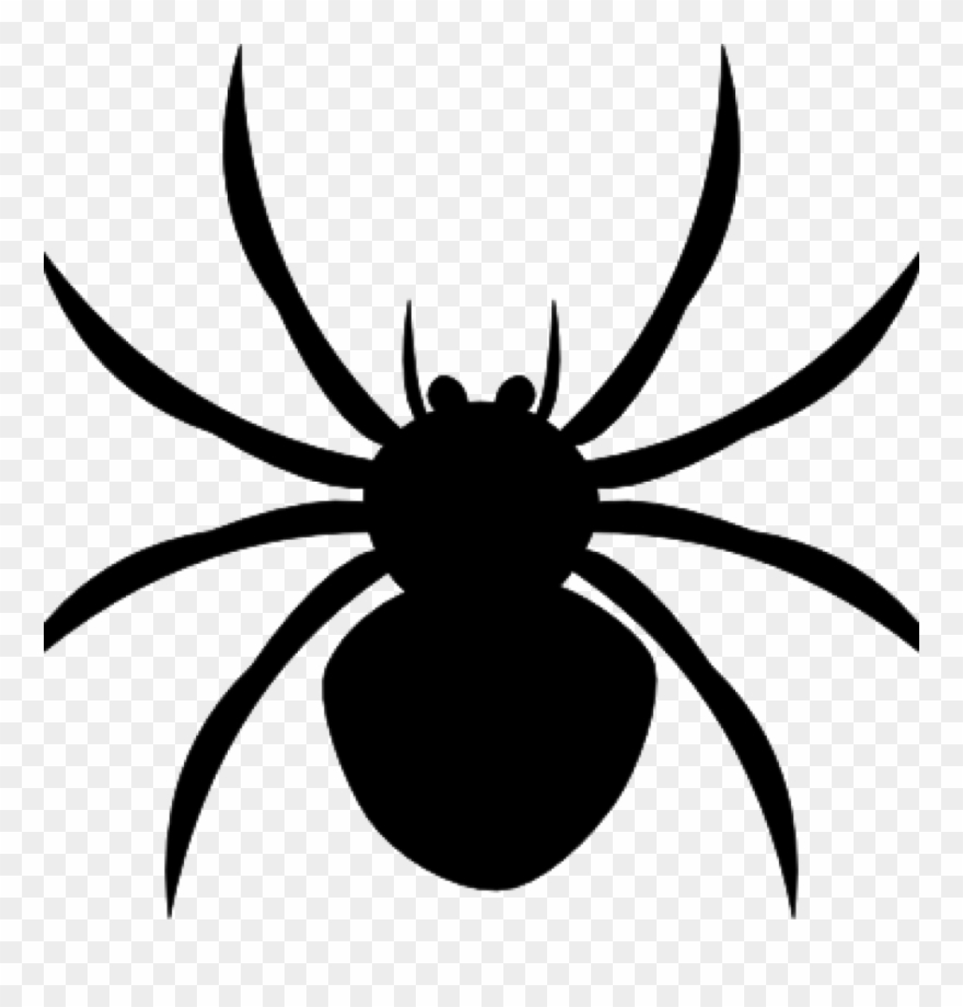 Wide spider clipart picture black and white stock Spider Clipart Black And White Arachnophobia Overcoming ... picture black and white stock