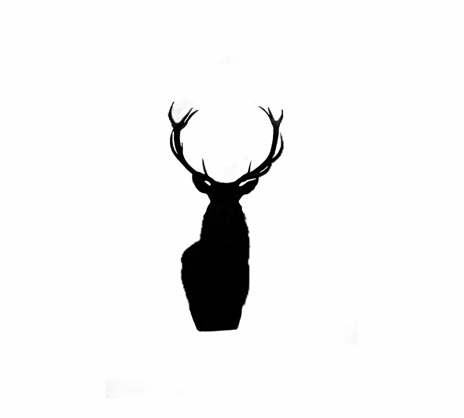 White stag clipart clipart free animalsilhouette #blacksilhouette #deer #black #silhouette ... clipart free