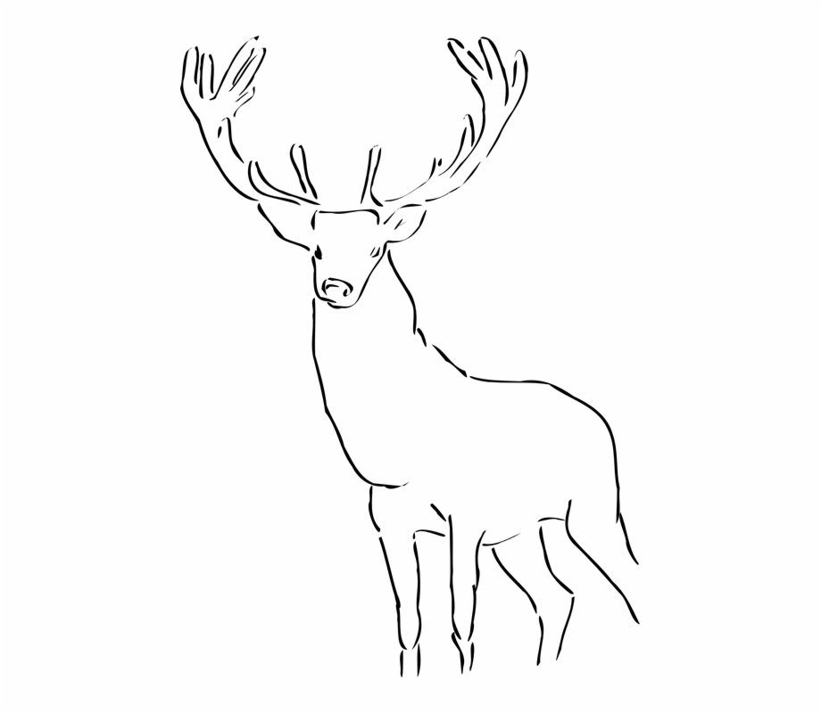 White stag clipart graphic royalty free download Deer Stag Antlers Wild Animal Mammal Head - Black And White ... graphic royalty free download
