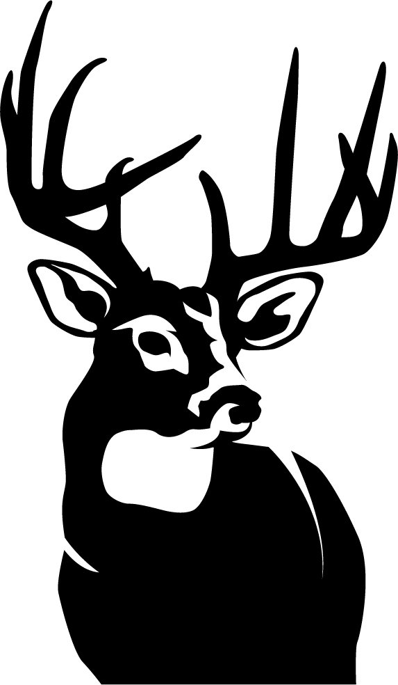 White tailed deer etching clipart graphic freeuse library Free Deer Graphics, Download Free Clip Art, Free Clip Art on ... graphic freeuse library