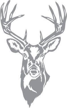 White tailed deer etching clipart picture download Glass etching stencil of Whitetail Buck. In category: North ... picture download