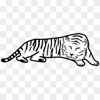 White tiger laying down clipart clip free library Tiger PNG Transparent For Free Download - PngFind clip free library