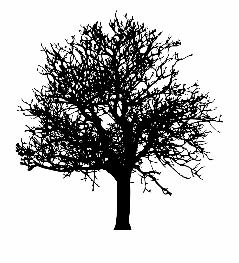 White tree black background clipart png free Tree Png Transparent Images - Tree Silhouette Transparent ... png free