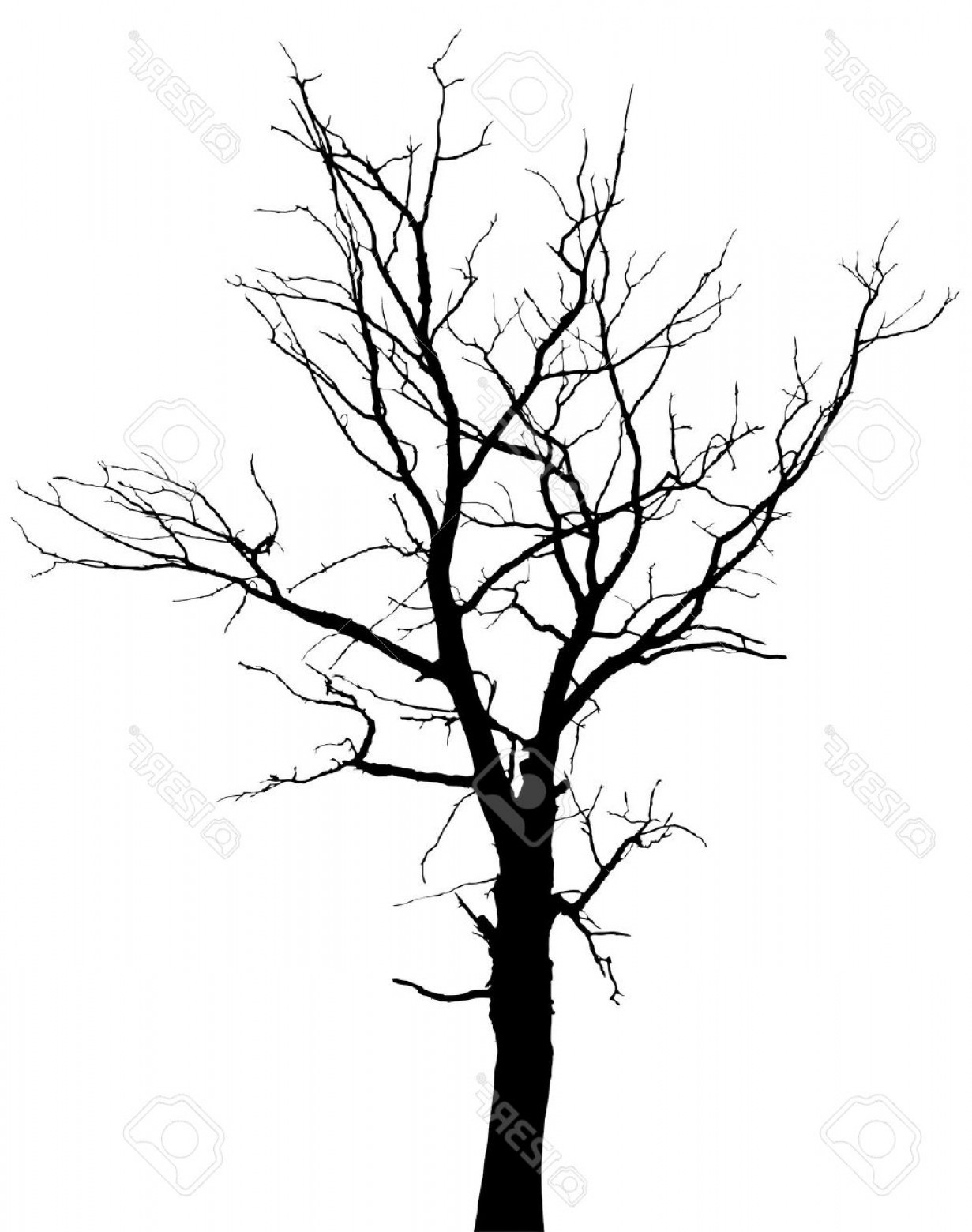 White tree black background clipart clip art black and white Barren Black Tree Clipart With Transparent Background   SOIDERGI clip art black and white
