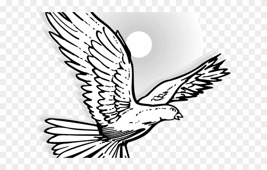 White winged dove clipart black and white svg freeuse Mourning Dove Clipart White Winged - Flying Dove - Png ... svg freeuse