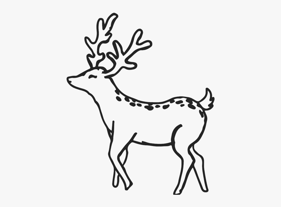 Whitetail deer outline clipart picture transparent library Deer Outline Png #2597341 - Free Cliparts on ClipartWiki picture transparent library