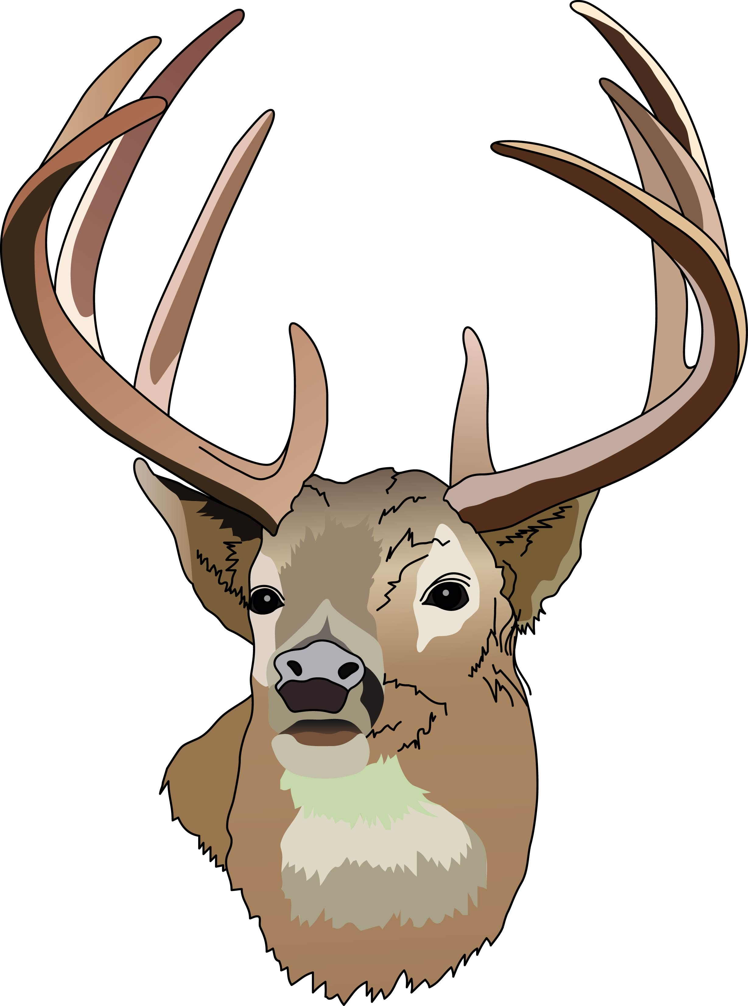 Whitetail deer outline clipart picture free stock Whitetail Deer Head Clip Art free image picture free stock