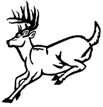 Whitetail deer outline clipart clip download Whitetail Deer Outline Drawings | Deer Running Outline Wall ... clip download