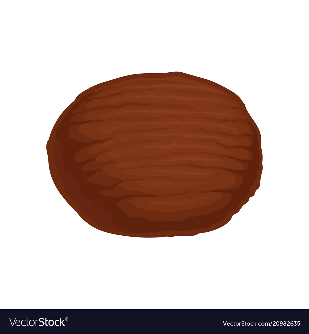 Whole coconut clipart cute jpg library Flat icon of whole brown coconut natural jpg library