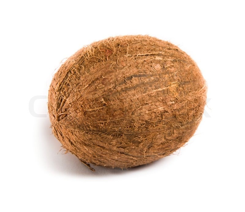 Whole coconut clipart clipart freeuse stock Whole coconut clipart 4 » Clipart Portal clipart freeuse stock