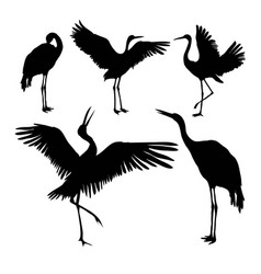 Whooping crane clipart black and white vector scene vector royalty free Dancing Crane Vector Images (82) vector royalty free