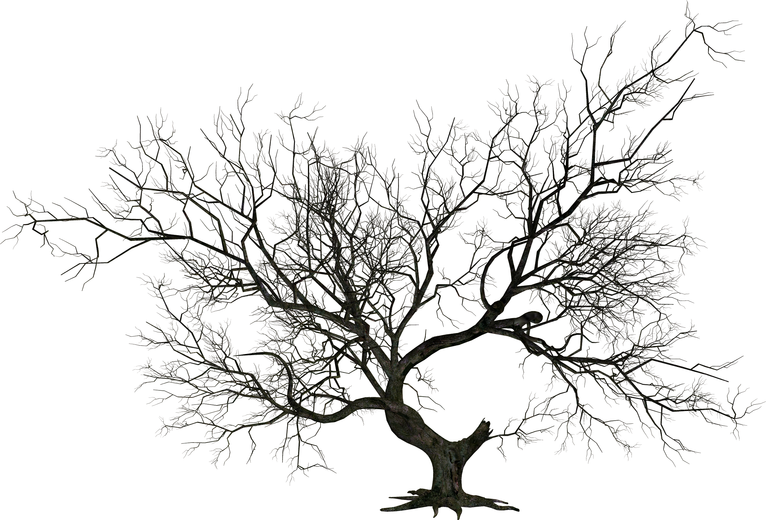 Wicked dead tree clipart png royalty free HD Creepy Tree - Tree Halloween Png , Free Unlimited ... png royalty free