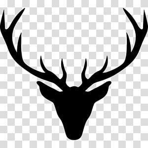 Wide deer antler clipart download Cavanagh Hunter Region grapher Wedding , beautifully chin ... download
