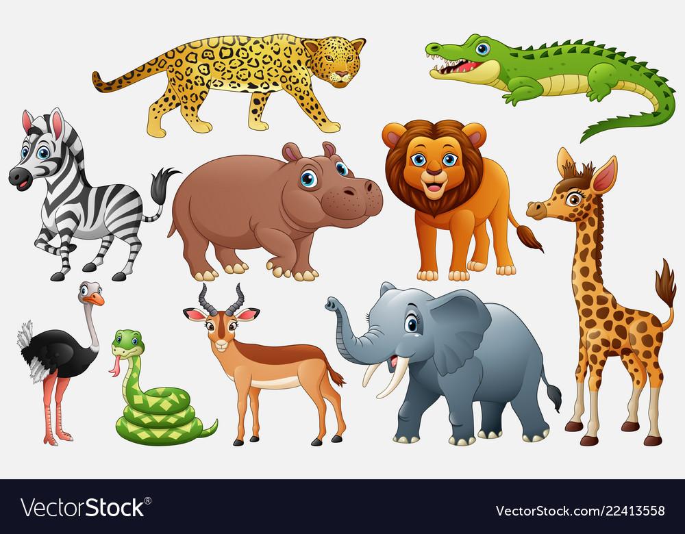 Wild animal cartoon clipart vector library Cartoon wild animals on white background vector library