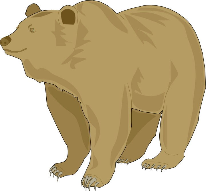 Wild bear clipart clipart freeuse Free Bear Clipart clipart freeuse